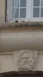 Who was he? It's a serious contemplation of life etched on that visage! Qui était-il? C'est une sérieuse contemplation de la vie gravée sur ce visage!